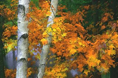 Photograph - Autumn Colors by Jim Vance