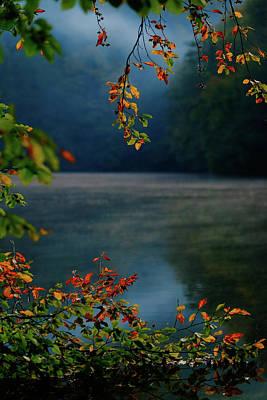 Photograph - Autumn Colors by Okan YILMAZ