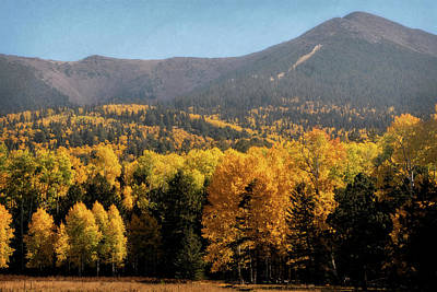 Photograph - Autumn Colors On San Francisco Peaks  by Saija Lehtonen