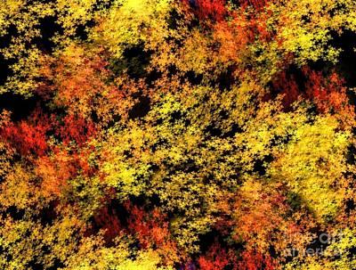 Digital Art - Autumn Colors by Yali Shi