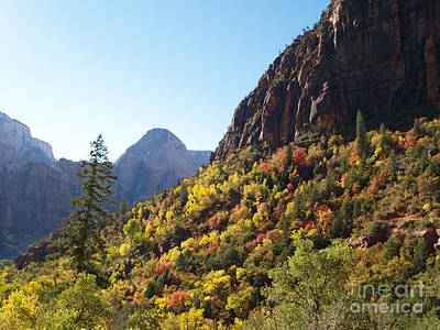 Thomas Kinkade - Autumn Colours in Zion by Alex Cassels