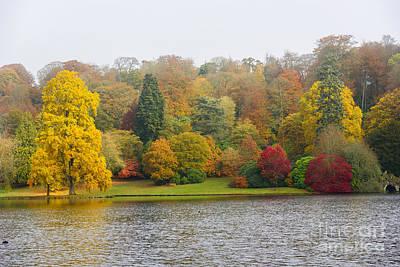 Photograph - Autumn Colous by Colin Rayner