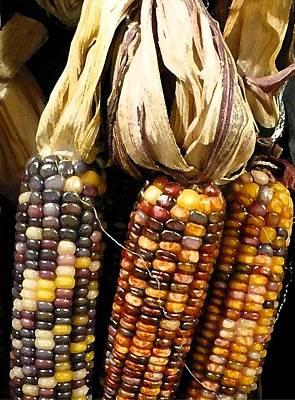 Autumn Corn Original