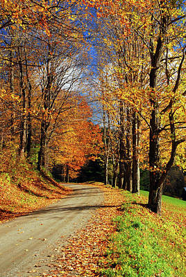Photograph - Autumn Country Road by James Kirkikis