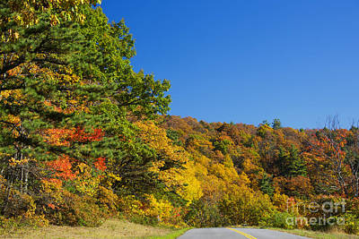 Photograph - Autumn Country Roads Blue Ridge Parkway by Schwartz Nature Images