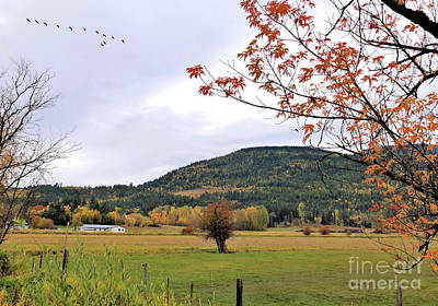 Photograph - Autumn Country View by Victor K