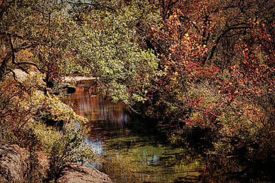 Photograph - Autumn Creek by Judy Vincent