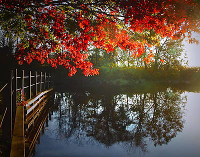 Photograph - Autumn Creek Magic by Roger Bester