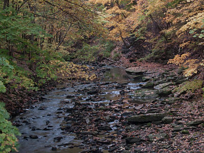 Photograph - Autumn Creek by Stewart Helberg