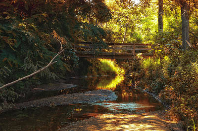 Autumn Creek Art Print by Thomas Woolworth