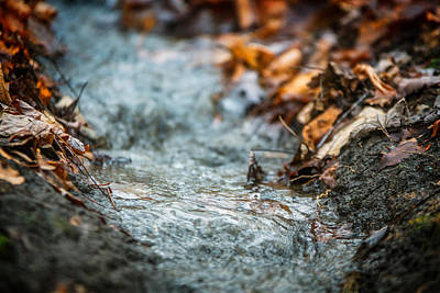 Photograph - Autumn Creeklet by Chris Bordeleau