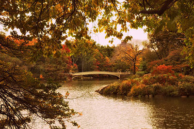 Photograph - Autumn Crescendo At Bow Bridge by Jessica Jenney