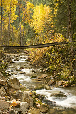 Autumn Crossing Art Print by Idaho Scenic Images Linda Lantzy