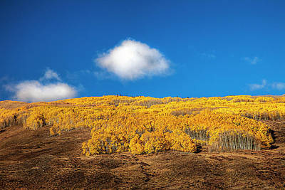 Vibrant Color Photograph - Autumn Day by Andrew Soundarajan