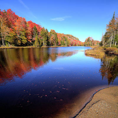 Photograph - Autumn Day At The Pond by David Patterson