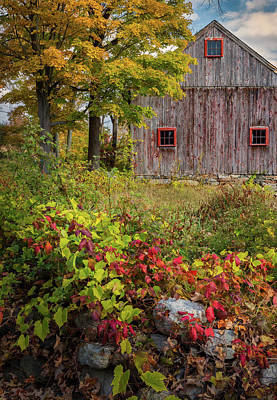 Photograph - Autumn Day by Bill Wakeley