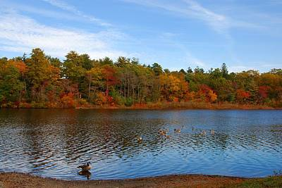 Photograph - Autumn Day On The Lake - Lake Carasaljo by Angie Tirado