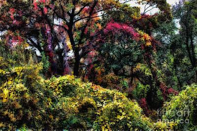 Photograph - Autumn Daze by Jeff Breiman