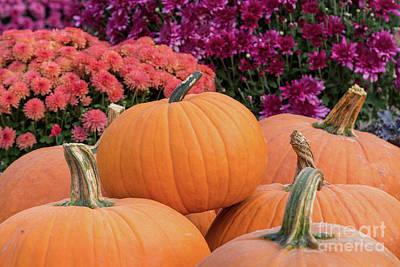 Photograph - Autumn Decorations by Karin Pinkham