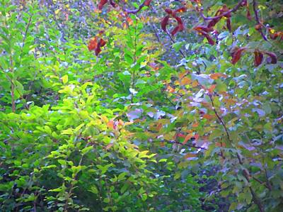 Photograph - Autumn Deeps by Oleg Zavarzin
