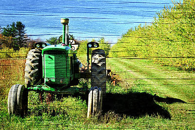 Photograph - Autumn Deere With Wood Grain by Luke Moore