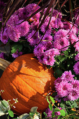 Photograph - Autumn Delight by Cate Franklyn