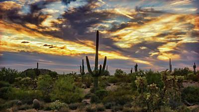 Photograph - Autumn Desert Skies Aglow by Saija Lehtonen