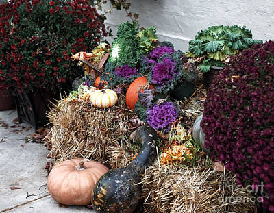 Photograph - Autumn Designs by John Rizzuto