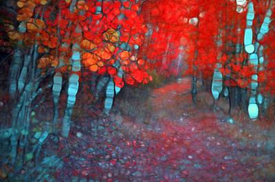 Photograph - Autumn Distortions by Tara Turner