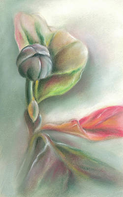 Pastel - Autumn Dogwood With The Promise Of Spring by MM Anderson