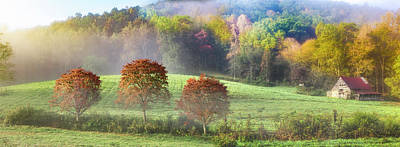 Photograph - Autumn Dogwoods Panorama by Debra and Dave Vanderlaan