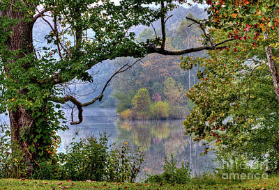 Photograph - Autumn Dream IIi by Douglas Stucky