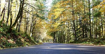 Photograph - Autumn Drive by Brian Eberly