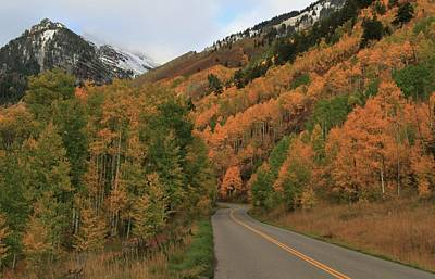 Photograph - Autumn Drive In Aspen Colorado by Dan Sproul