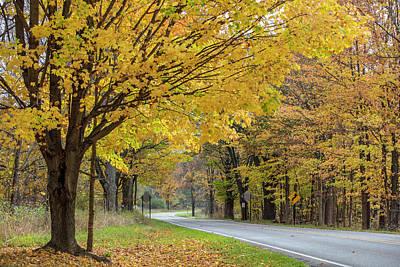 Photograph - Autumn Drive  by John McGraw
