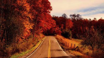 Photograph - Autumn Drive by L O C