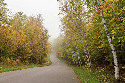 Photograph - Autumn Drive by Penny Meyers