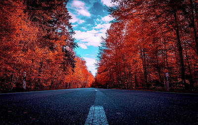 Photograph - Autumn Drive by Pixabay