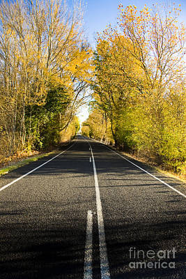 Photograph - Autumn Drive by Jorgo Photography - Wall Art Gallery