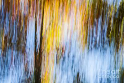 Impressionism Photos - Autumn by Elena Elisseeva