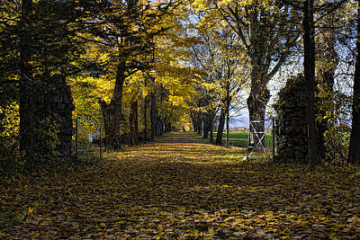 Photograph - Autumn Entry by Ron Grafe
