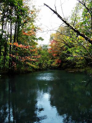 Photograph - Autumn Evening by Cyryn Fyrcyd