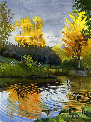Ducks In Watercolor Painting - Autumn Evening Light by Hollis Machala