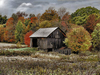 Photograph - Autumn Evening by William Griffin