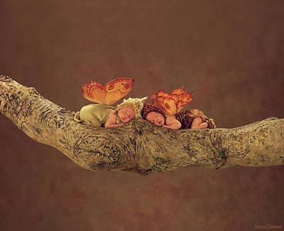 Print featuring the photograph Autumn Fairies by Anne Geddes