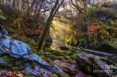 Photograph - Autumn Fairy Glen by Ian Mitchell