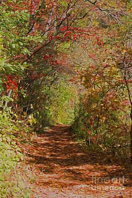 Photograph - Autumn Fairy Walk by Barbara McMahon
