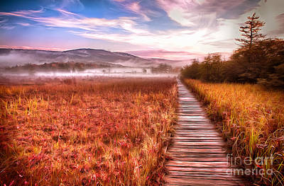 Painting - Autumn Fall Colors 4 Ap by Dan Carmichael