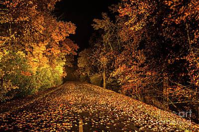 Photograph - Autumn Fall Colors - A Blue Ridge Road Less Traveled by Dan Carmichael