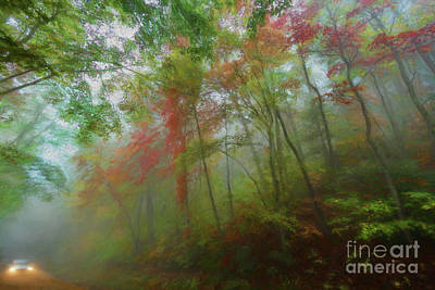 Digital Art - Autumn Fall Colors - A Foggy Drive Through Paradise Ap by Dan Carmichael